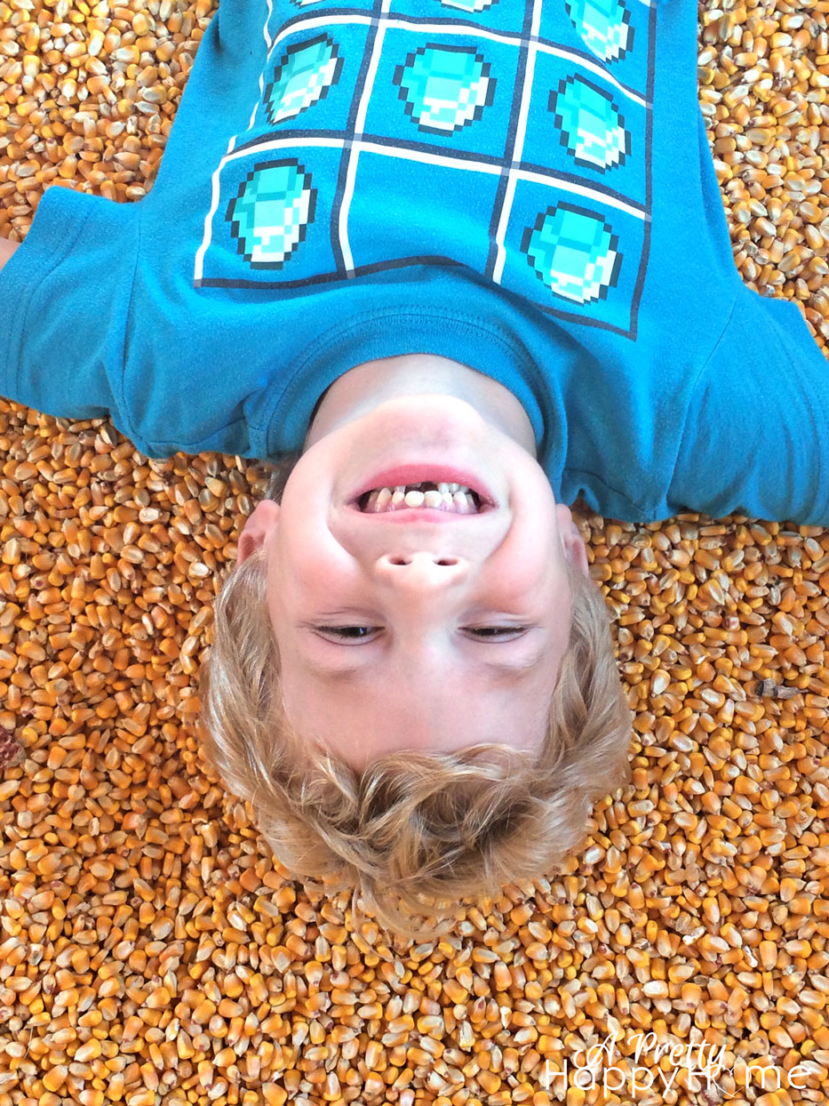 kid in pit of corn