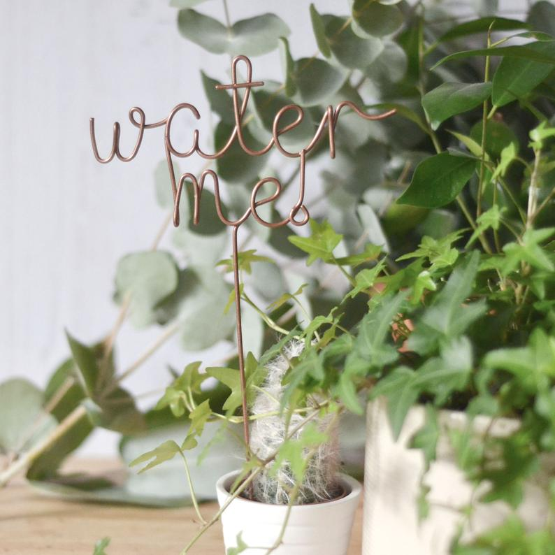 water me plant marker by The Letter Loft UK on Etsy