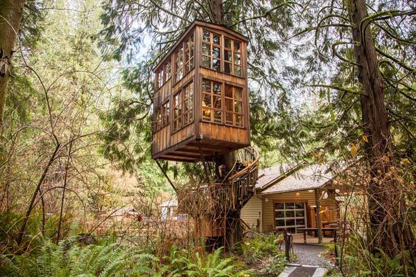 treehouse b&b treehouse point