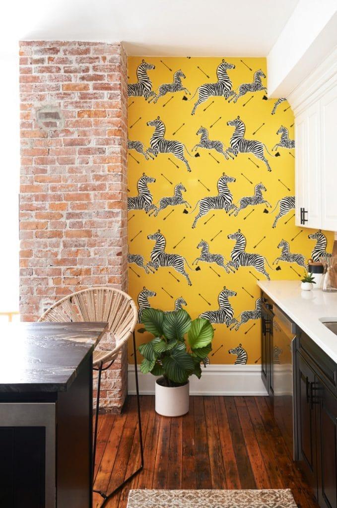 zebra wallpaper via domino