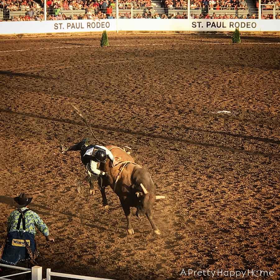 st paul rodeo