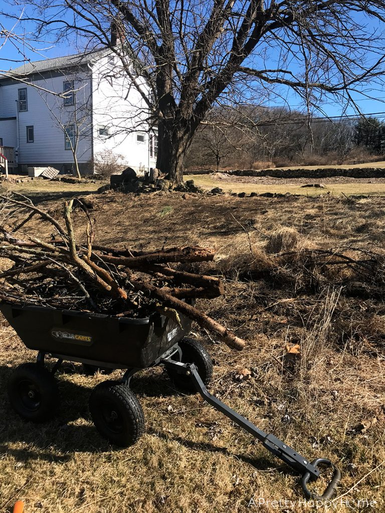 winter yard clean up with gorilla cart