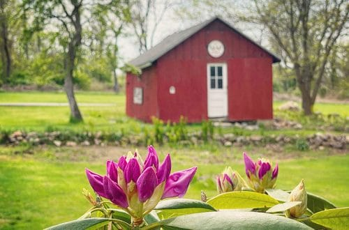 colonial farmhouse barn spring on the happy list