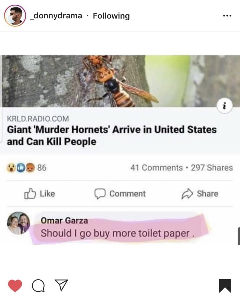 murder hornet meme via a bubbly life on the happy list