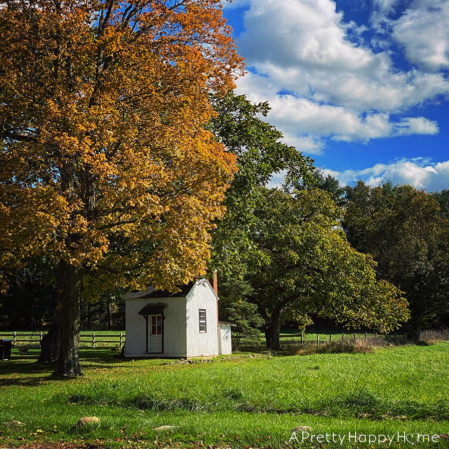 tiny house in fall on the happy list